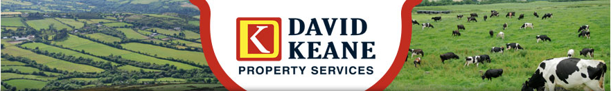 David Keane Properties Services